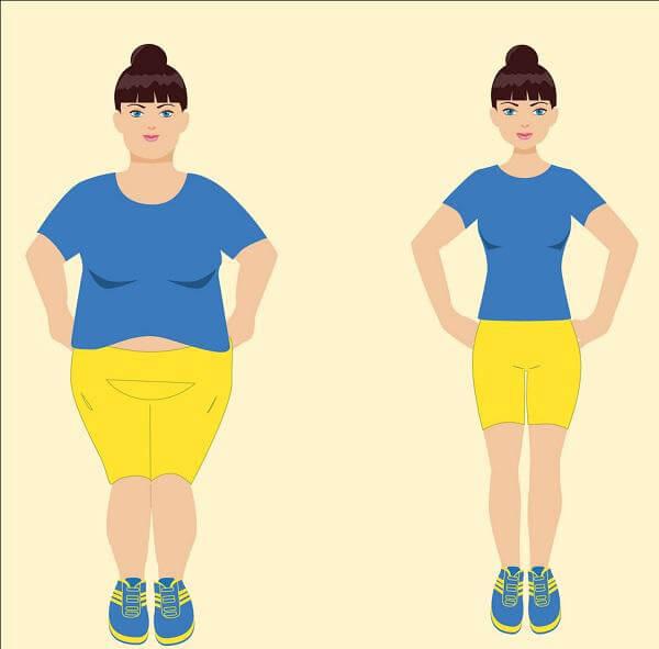 فوائد الشبت للتخسيس | تعرف على وصفة الشبت السحرية لإنقاص الوزن